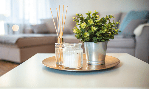 Diffuser, candle, indoor plant
