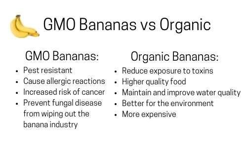 GMO bananas vs Organic list.